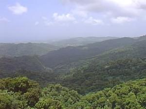 La vista desde Sierra Luquillo, conocida como una de las excursiones más complicadas.  (Tomada: Sol Boricua)