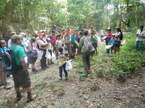 Diversos grupos incorporan a visitantes como voluntarios para conservar el bosque nacional (Tomada: Revista Ebay)