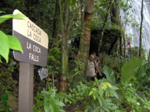 La cascada La Coca se conoce como uno de los lugares favoritos de los visitantes. (Tomada: Best Travel Deal Tips)