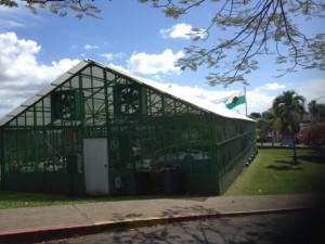 El RUM (El Recinto Universitario de Mayagüez) ofrece cursos de Hidroponía Comercial al público en general (por: Andrea C. Pérez Toro)