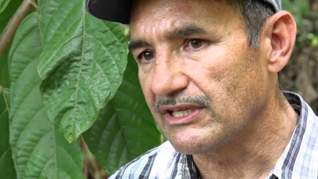 El agricultor Juan Echevarría vende el cacao a chocolateras estadounidenses. (Tomada de YouTube)